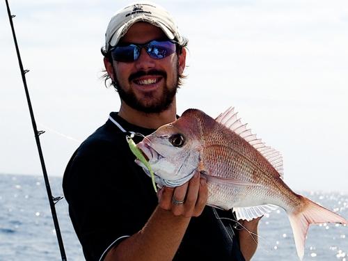 Fishfinder Snapper Plastic