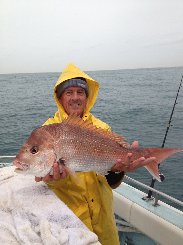 Fishfinder Snapper